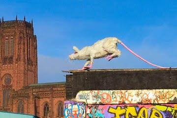 Super Rat Liverpool